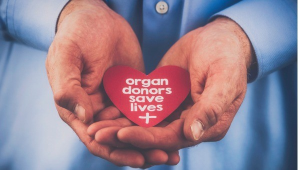 "Hands holding a heart that says ""organ donors save lives"""