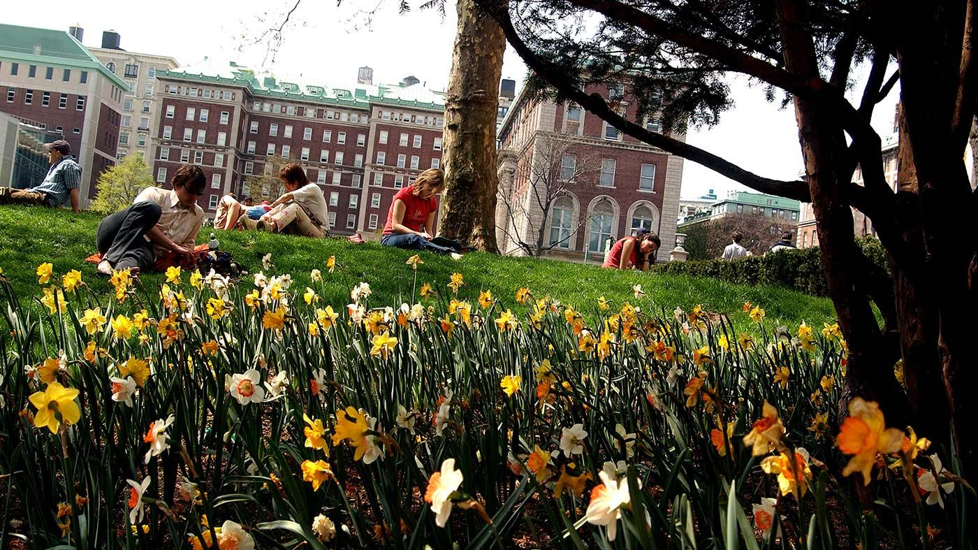 Students on lawn near flowers